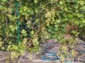 Дома, хозяйства,  Самарская область Другое, цена 4 200 000 рублей, Фото