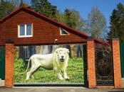 Дома, хозяйства,  Владимирская область Другое, цена 12 000 000 рублей, Фото