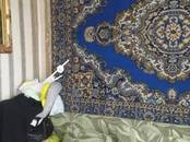 Дома, хозяйства,  Новосибирская область Новосибирск, цена 2 630 000 рублей, Фото