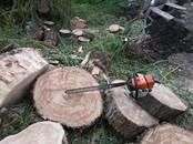 Хозяйственные работы Уход за садами и газонами, цена 200 рублей, Фото