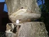 Хозяйственные работы Вырубка леса, цена 300 рублей, Фото