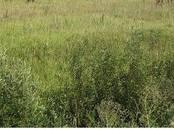 Земля и участки,  Краснодарский край Краснодар, цена 1 082 000 рублей, Фото