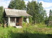 Дачи и огороды,  Ленинградская область Волховский район, цена 299 000 рублей, Фото