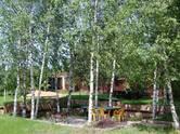 Дома, хозяйства,  Московская область Истринский район, цена 95 471 850 рублей, Фото