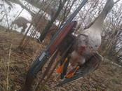 Охота, рыбалка,  Оружие Охотничье, цена 17 000 рублей, Фото