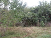 Дачи и огороды,  Краснодарский край Другое, цена 870 000 рублей, Фото