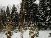 Земля и участки,  Московская область Пушкино, цена 1 950 000 рублей, Фото
