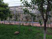 Дома, хозяйства,  Краснодарский край Сочи, цена 36 000 000 рублей, Фото