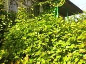 Дачи и огороды,  Саратовская область Саратов, цена 1 300 000 рублей, Фото