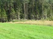 Земля и участки,  Ленинградская область Приозерский район, цена 340 000 рублей, Фото