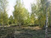 Земля и участки,  Московская область Сергиев посад, цена 950 000 рублей, Фото