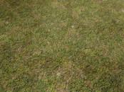 Земля и участки,  Краснодарский край Динская, цена 1 750 000 рублей, Фото