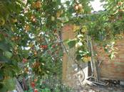 Дома, хозяйства,  Омская область Другое, цена 700 000 рублей, Фото