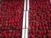 Продовольствие Ягоды, цена 150 рублей/кг., Фото