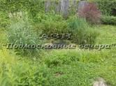 Земля и участки,  Московская область Ленинградское ш., цена 2 750 000 рублей, Фото