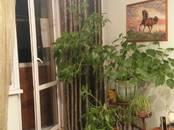 Квартиры,  Москва Орехово, цена 9 490 000 рублей, Фото
