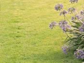 Земля и участки,  Краснодарский край Краснодар, цена 2 300 000 рублей, Фото