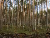 Земля и участки,  Санкт-Петербург Комендантский проспект, цена 4 600 000 рублей, Фото