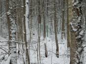 Земля и участки,  Ленинградская область Приозерский район, цена 27 000 000 рублей, Фото