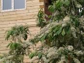 Дома, хозяйства,  Новосибирская область Новосибирск, цена 3 900 000 рублей, Фото