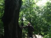 Земля и участки,  Краснодарский край Горячий Ключ, цена 5 300 000 рублей, Фото