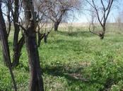 Дома, хозяйства,  Белгородскаяобласть Борисовка, цена 280 000 рублей, Фото