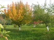 Земля и участки,  Нижегородская область Другое, цена 1 950 000 рублей, Фото