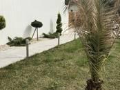 Дома, хозяйства,  Краснодарский край Сочи, цена 28 000 000 рублей, Фото