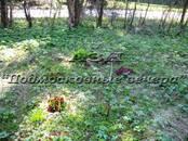 Дачи и огороды,  Московская область Ярославское ш., цена 2 200 000 рублей, Фото