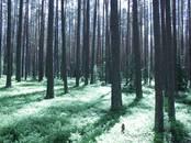 Земля и участки,  Тверскаяобласть Другое, цена 770 000 рублей, Фото