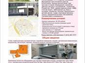 Магазины,  Алтайский край Барнаул, цена 46 320 рублей/мес., Фото