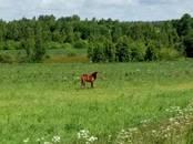 Земля и участки,  Смоленская область Другое, цена 1 800 000 рублей, Фото