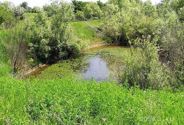 озеро продам северский район краснодарский край осень